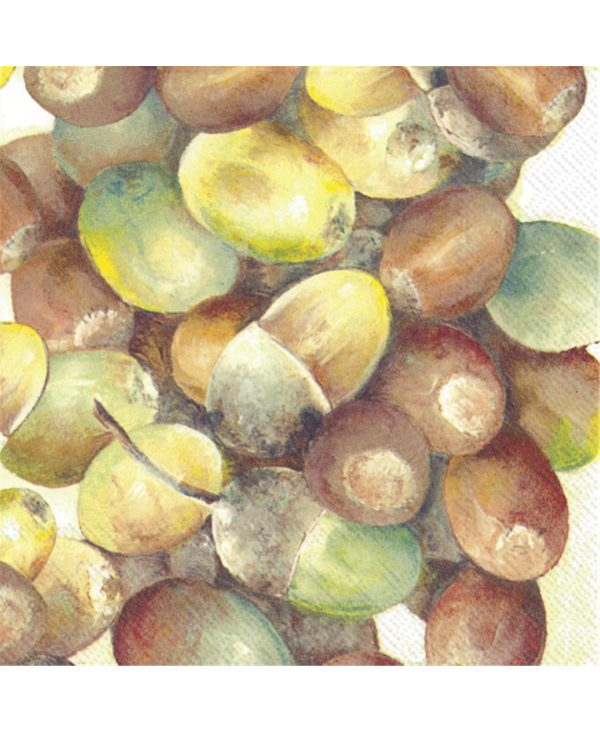 Schonhuber Spa - Ag Tovagliolo 33x33 Carta Deco Autunno Ihr Crop Of Acorns