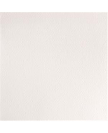Winsor & Newton - Acquarello Extra-Fine Artists Awc 1-2 Godet Serie 1 - Colore Chinese White