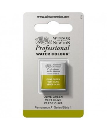 Winsor & Newton - Acquarello Extra-Fine Artists Awc 1-2 Godet Serie 1 - Colore 447 Olive Green