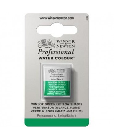 Winsor & Newton - Acquarello Extra-Fine Artists Awc 1-2 Godet Serie 1 - Colore 721 Winsor Green Yellow Shade