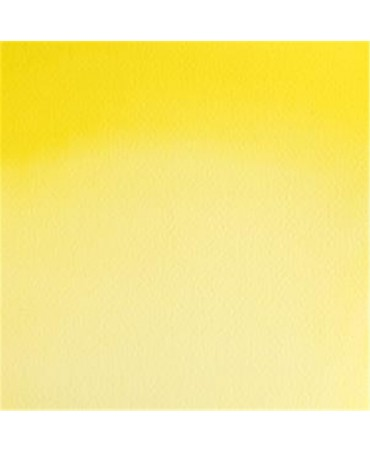 Winsor & Newton - Acquarello Extra-Fine Artists Awc 1-2 Godet Serie 3 - Colore 025 Bismuth Yellow
